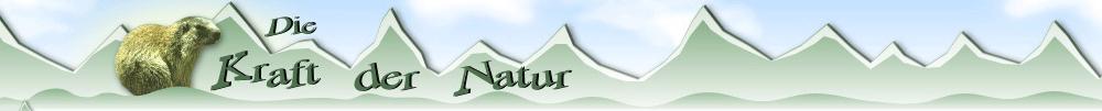 Murmeltier Marmotta